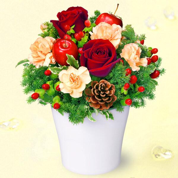 【12月の誕生花(赤バラ等)】赤バラのウィンターアレンジメント