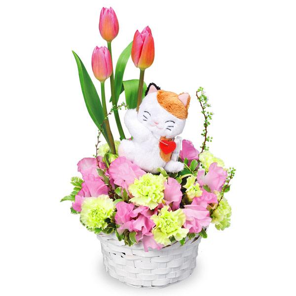【チューリップ特集】三毛猫のチューリップアレンジメント(ピンク) 511933 |花キューピットの2019チューリップ特集特集