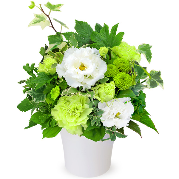【お盆・新盆】お供えのアレンジメント 511953 |花キューピットのお盆・新盆特集2020