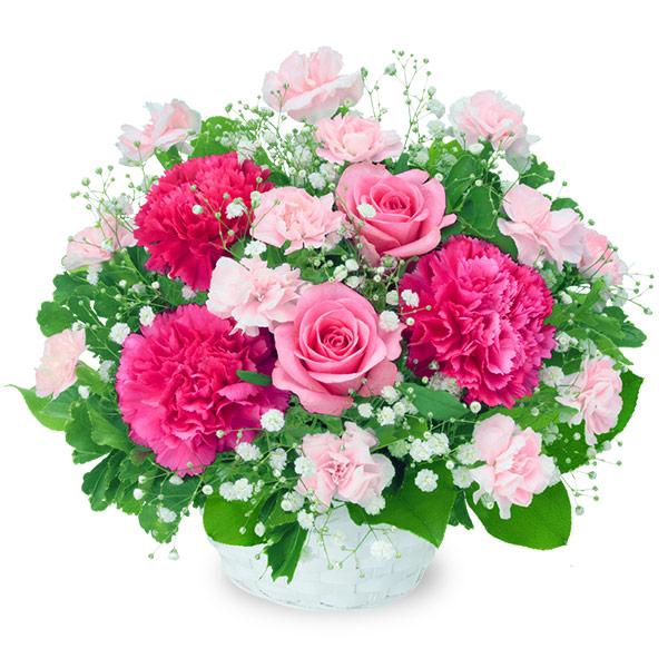 【お見舞い】ピンクバラのアレンジメント