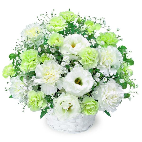 【お盆・新盆】お供えのアレンジメント 511972 |花キューピットのお盆・新盆特集2020