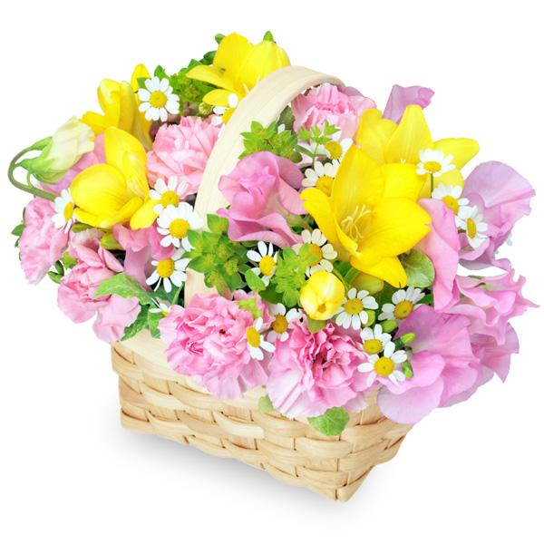 【1月の誕生花(スイートピー等)】フリージアとスイートピーのバスケット