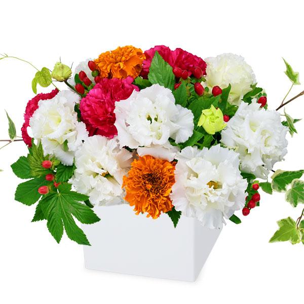 【夏の花贈り特集】トルコキキョウのキューブアレンジメント 511987 |花キューピットの夏の花贈り特集2020