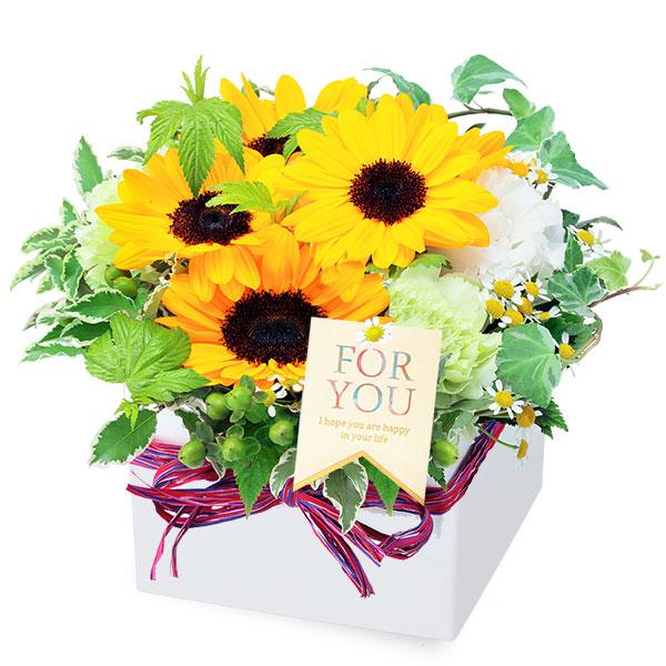 【父の日】ひまわりのキューブアレンジメント 511990 |花キューピットの父の日フラワーギフト特集2020