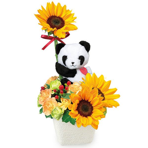 【お見舞い】ひまわりのマスコット付きアレンジメント(パンダ)