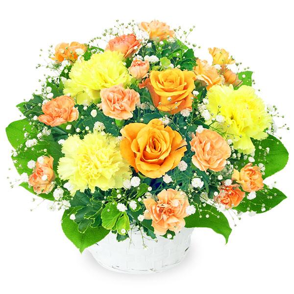 【誕生日フラワーギフト】オレンジバラのアレンジメント