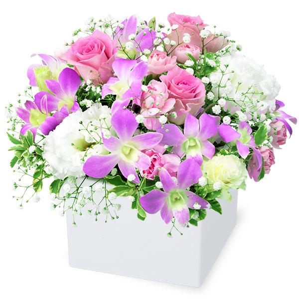 【お祝い】デンファレとバラのキューブアレンジメント
