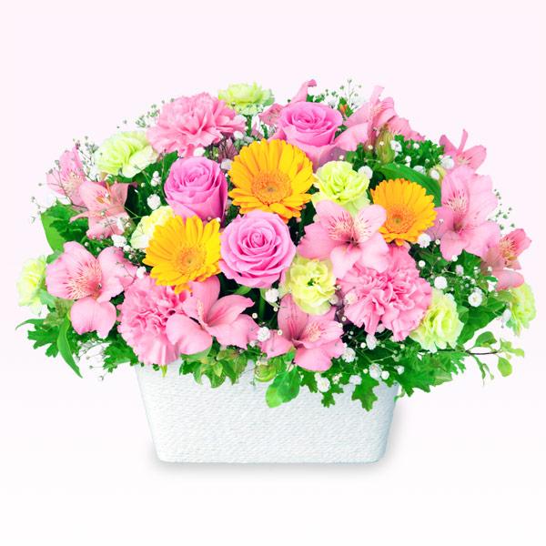 【誕生日フラワーギフト】アルストロメリアとガーベラのアレンジメント