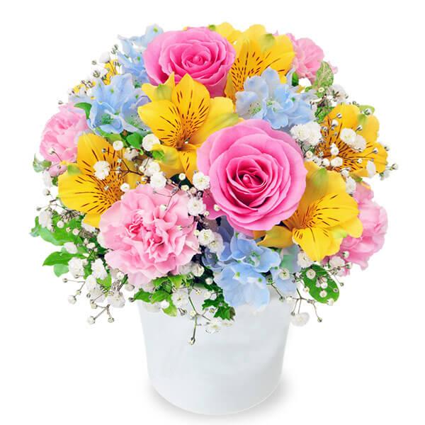 【4月の誕生花(アルストロメリア等)】アルストロメリアのカラフルアレンジメント