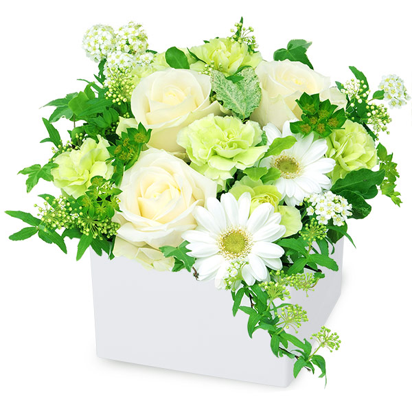 【結婚記念日】白バラのキューブアレンジメント