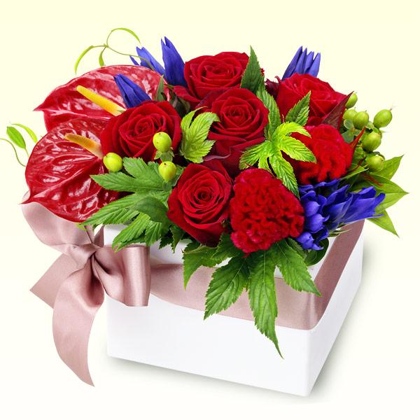 【お祝い】赤バラとリンドウのキューブアレンジメント