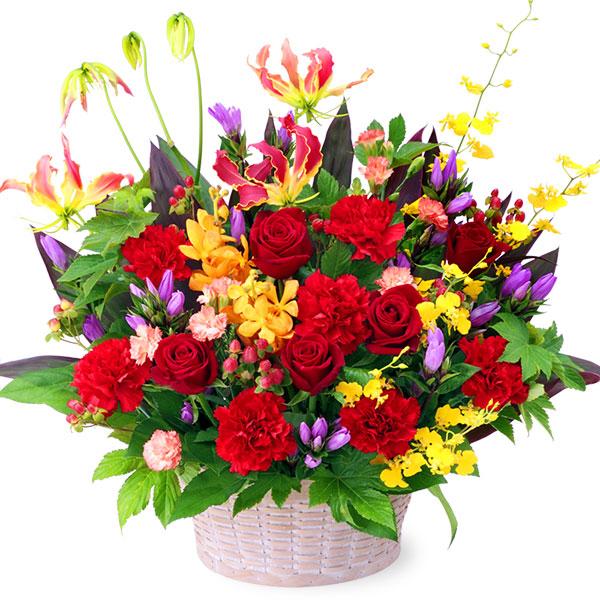 【秋の発表会・展覧会】レッド&イエローの華やかアレンジメント 512030 |花キューピットの2019秋のお祝いプレゼント特集