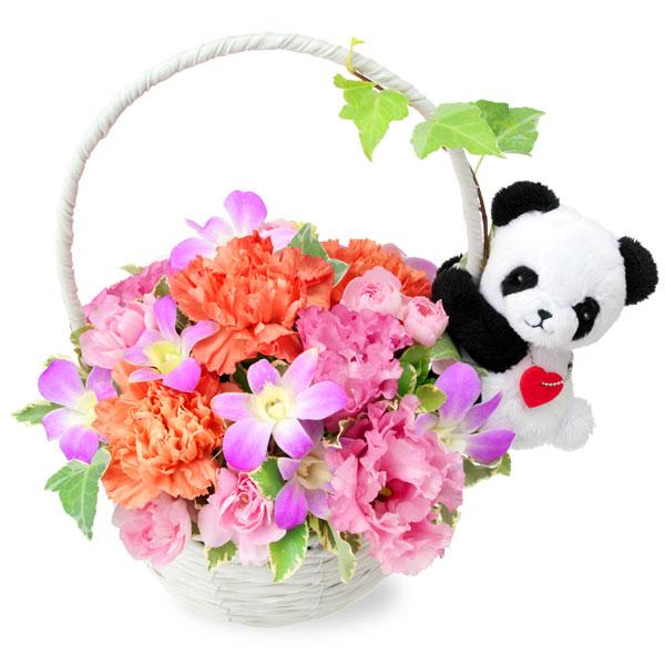 【夏の花贈り特集】デンファレのマスコット付きバスケット(パンダ) 512034 |花キューピットの夏の花贈り特集2020