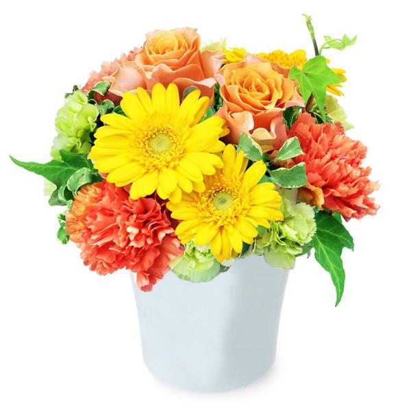 【秋の花贈り】オレンジバラとガーベラのナチュラルアレンジメント 512035 |花キューピットの2019秋のお祝いプレゼント特集