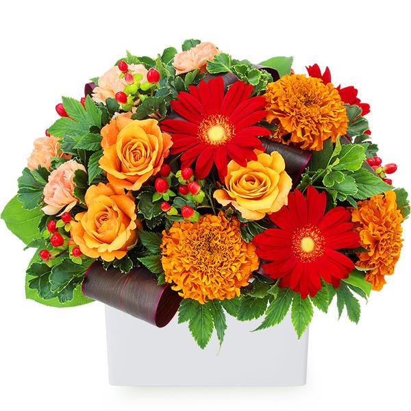 【11月の誕生花(ガーベラ等)】オレンジバラと赤ガーベラのアレンジメント