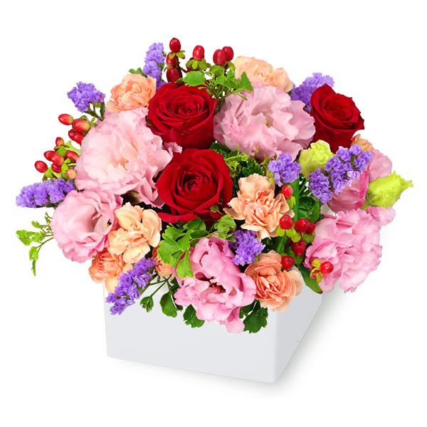 【アレンジメント(法人)】赤バラとトルコキキョウのキューブアレンジメント
