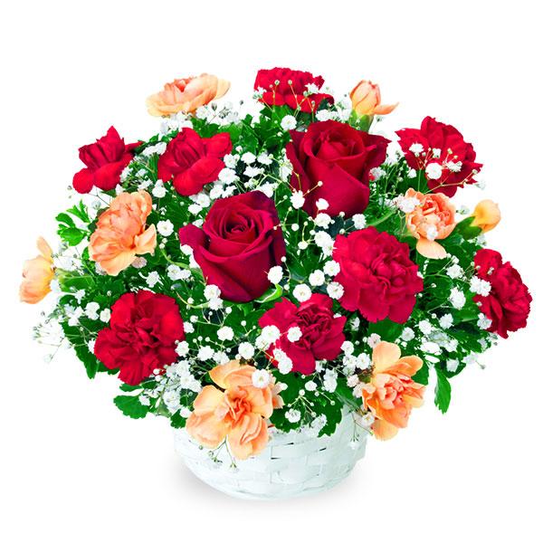 【秋のバラ特集】赤バラのアレンジメント 512048 |花キューピットの2019秋のバラ特集