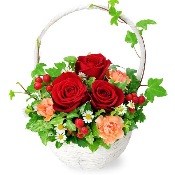【秋のバラ特集】赤バラのナチュラルバスケット 512056 |花キューピットの2019秋のバラ特集