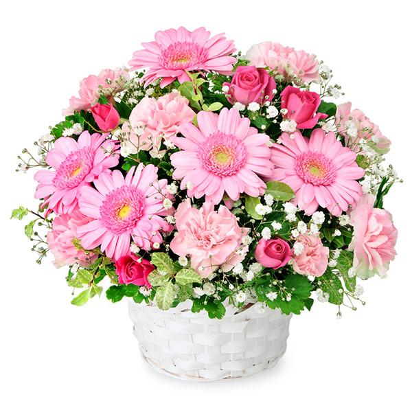 【いい夫婦の日】ピンクガーベラのアレンジメント 512065 |花キューピットの2019いい夫婦の日特集