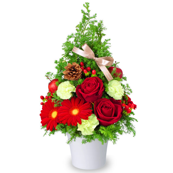 【クリスマスフラワー】クリスマスのツリー風アレンジメント 512068 |花キューピットの2019クリスマスフラワー特集