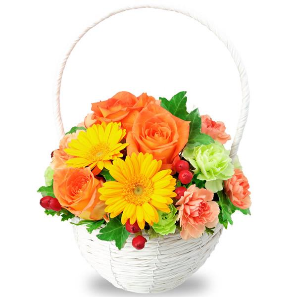 【ご出産祝い(法人)】オレンジバラとガーベラのナチュラルバスケット