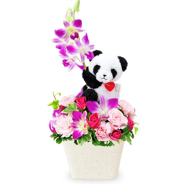【出産祝い】デンファレのマスコット付きアレンジメント(パンダ)