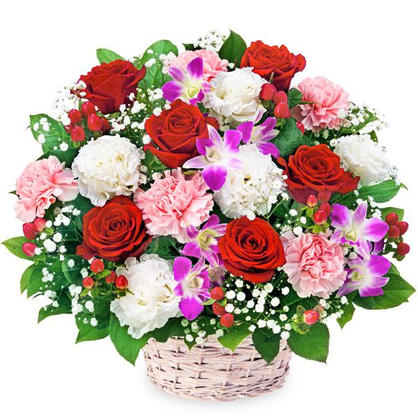 【ご昇進・ご栄転(法人)】赤バラとデンファレのアレンジメント