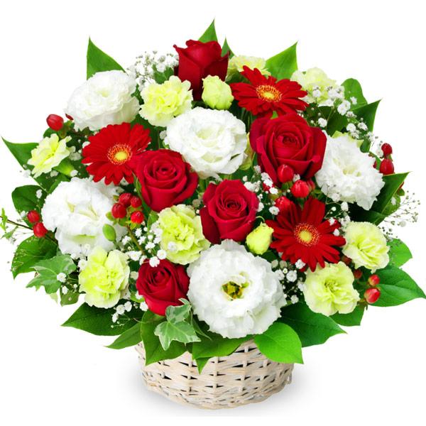 【12月の誕生花(赤バラ等)】赤バラと赤ガーベラのアレンジメント