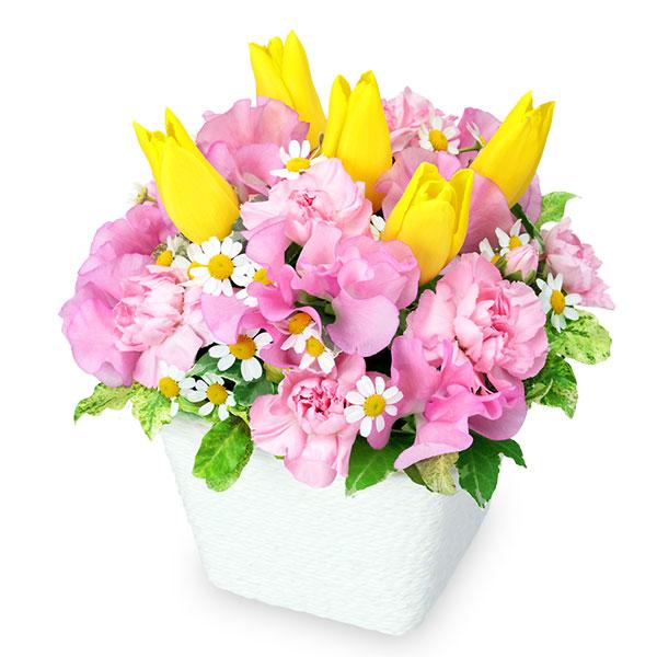 【1月の誕生花(スイートピー等)】スイートピーとイエローチューリップのアレンジメント