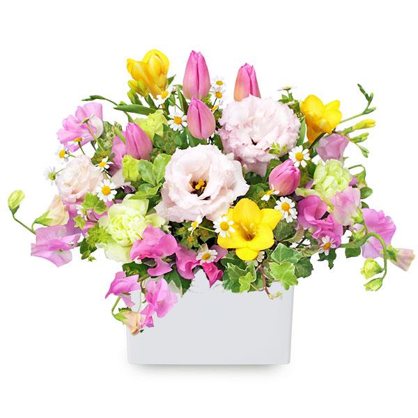 【1月の誕生花(スイートピー等)】ピンクとイエローのキューブアレンジメント