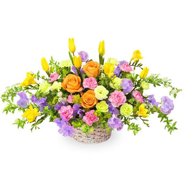 【2月の誕生花(チューリップ等)】イエローとパープルのバスケットアレンジメント