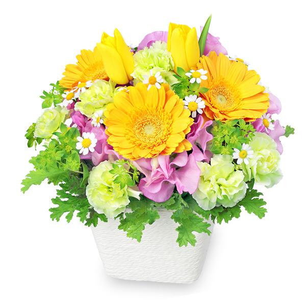 【チューリップ特集】春のガーデンアレンジメント(イエロー) 512156 |花キューピットの2019チューリップ特集特集