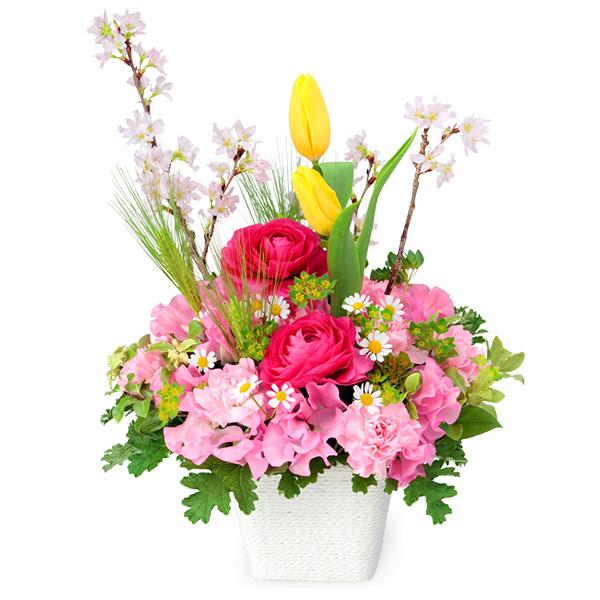 【ひな祭り】桜のカラフルアレンジメント 512158 |花キューピットの2020ひな祭り特集