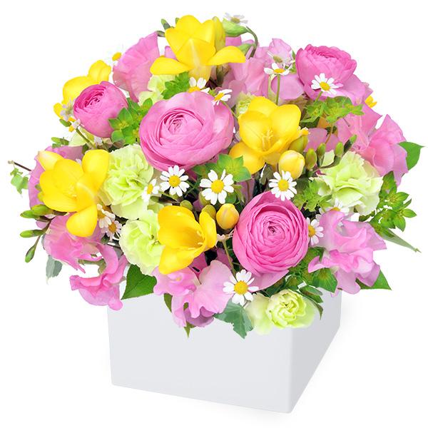 【春の誕生日】フリージアのキューブアレンジメント 512161 |花キューピットの2020春の誕生日特集