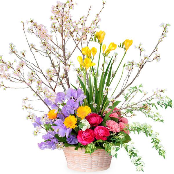 【卒園卒業・入園入学祝い】桜の豪華なアレンジメント
