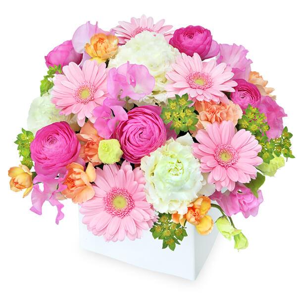 【3月の誕生花(ピンクガーベラ等)】ピンクガーベラのキューブアレンジメント