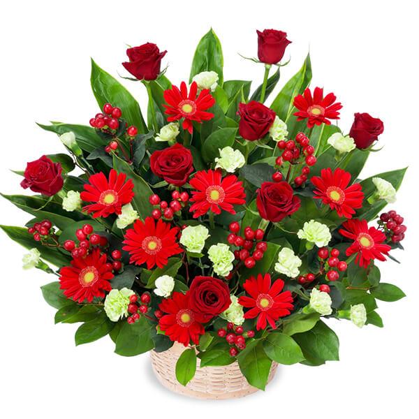 【12月の誕生花(赤バラ等)】赤バラと赤ガーベラの豪華なアレンジメント