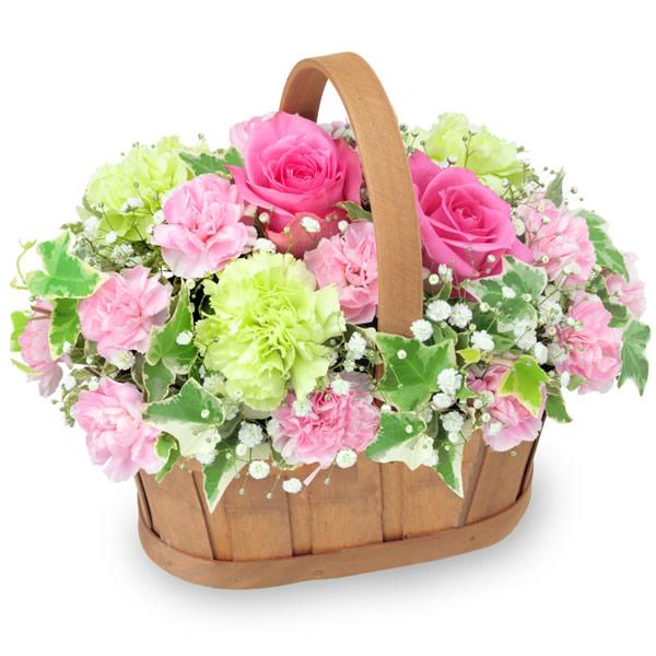 【5月の誕生花(ピンクバラ等)】ピンクバラのハーモニーバスケット