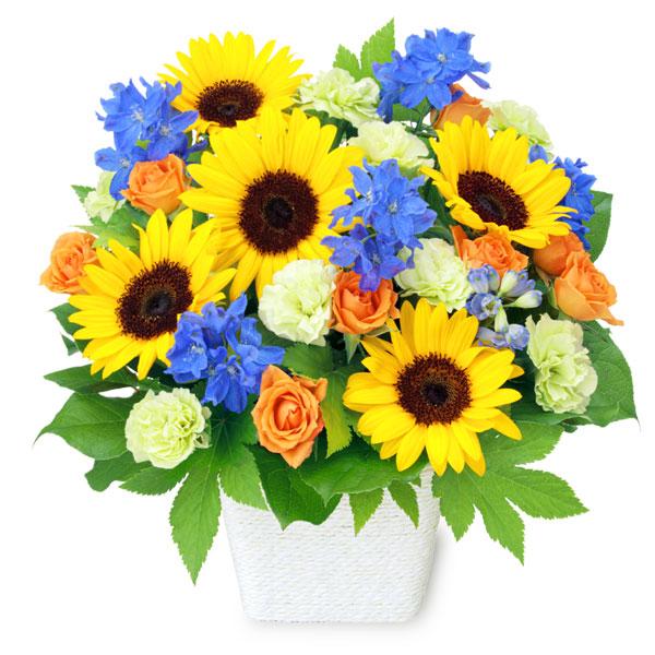 【父の日】お父さんありがとうアレンジメント 512213 |花キューピットの父の日フラワーギフト特集2020