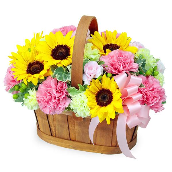 【ひまわり特集】ひまわりのハーモニーバスケット(ピンク) 512219 |花キューピットのひまわり特集2020