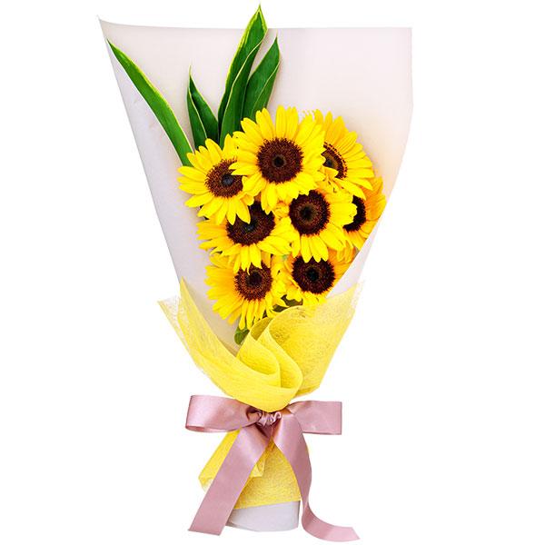 【ひまわり特集】ひまわり8本の花束 512227 |花キューピットのひまわり特集2020