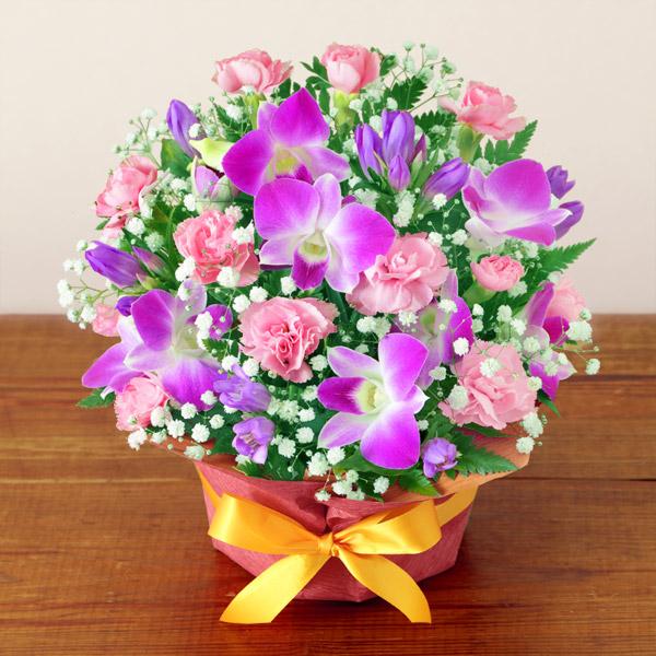 【敬老の日】ピンクデンファレのアレンジメント 512254 |花キューピットの敬老の日プレゼント特集2020