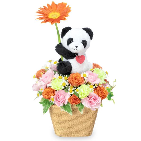 【11月の誕生花(ガーベラ等)】オレンジガーベラのマスコット付きアレンジメント(パンダ)