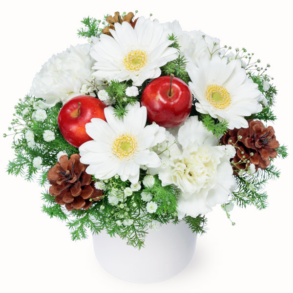 【冬の花贈り】白ガーベラのウィンターアレンジメント 512274 |花キューピットの冬の花贈り