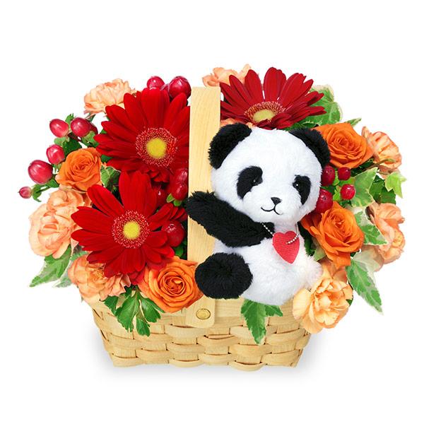 【11月の誕生花(ガーベラ等)】赤ガーベラのマスコット付きアレンジメント(パンダ)