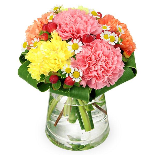 【結婚記念日】カーネーションのグラスブーケ 512303 |花キューピットの秋の誕生日特集