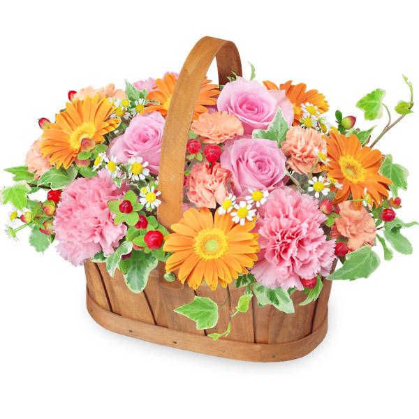 【冬の花贈り】ピンクとオレンジのハーモニーバスケット 512331 |花キューピットの冬の花贈り
