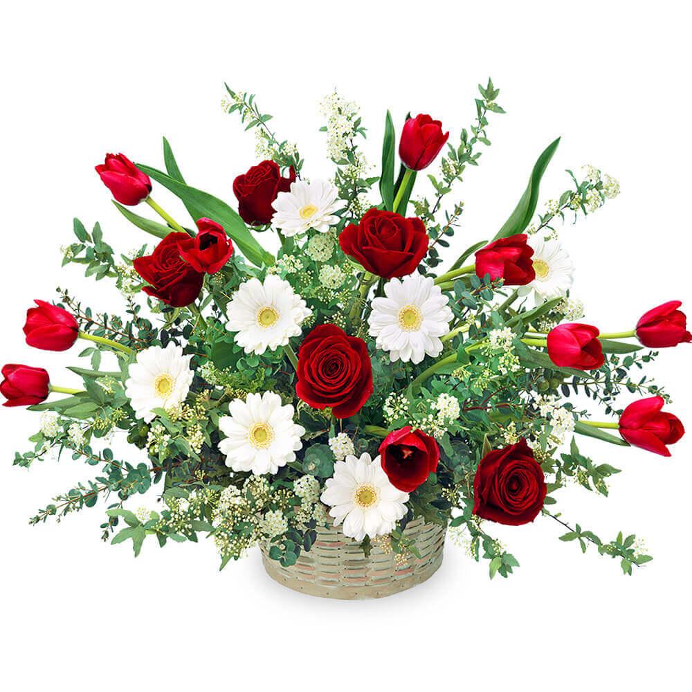 【チューリップ特集】赤チューリップの豪華なアレンジメント 512336 |花キューピットの2019チューリップ特集特集