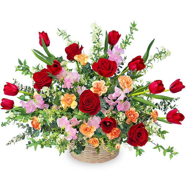 【2月の誕生花(チューリップ等)】赤チューリップの華やかアレンジメント