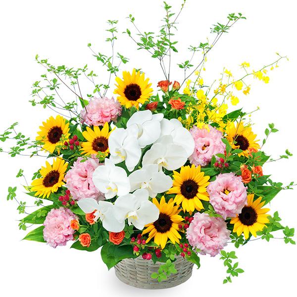 【ひまわり特集】ひまわりと胡蝶蘭の豪華なアレンジメント 512383 |花キューピットのひまわり特集プレゼント特集2021